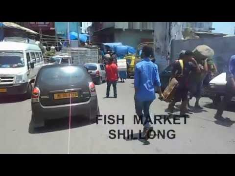 FISH MARKET IN INDIA - Travel India - Travel shillong and explore.