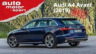 Audi A4 und S4 Avant (2019): Was kann die Neuauflage? - Fahrbericht/Review | auto motor & sport