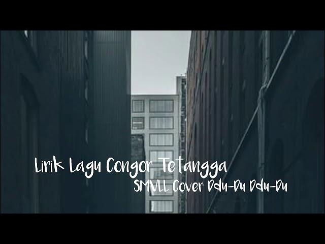 LIRIK LAGU CONGOR TETANGA - SMVLL Ddu-Du-Ddu-Du #1