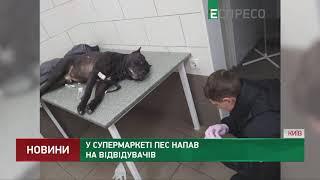 У супермаркеті пес напав на відвідувачів