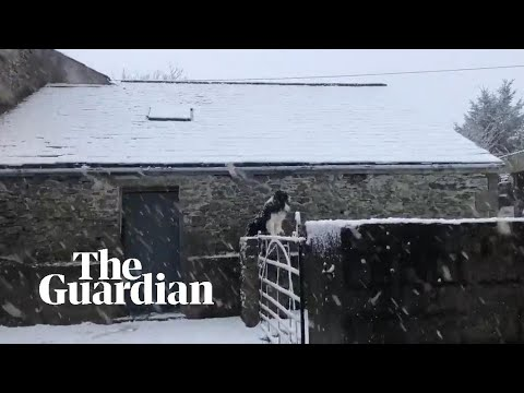 Snow Hits UK And Ireland As Temperatures Plunge