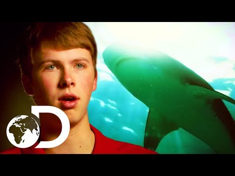 Bull Shark Attacks 16 Year Old On A Florida Beach | I'm Alive