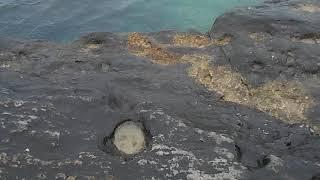 Фото Капельки дождя падают на выемки в камнях на берегу Каспийском море