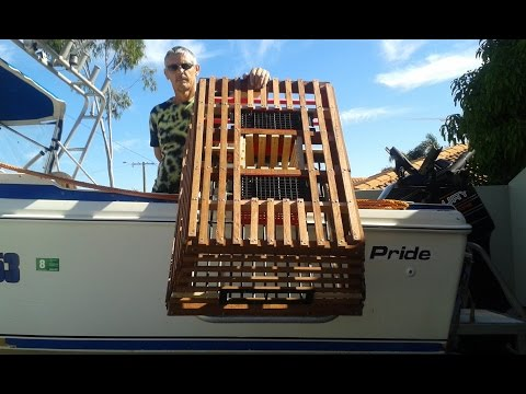 DIY How To Build Your Own Craypot (Lobster Pot) Perth WA