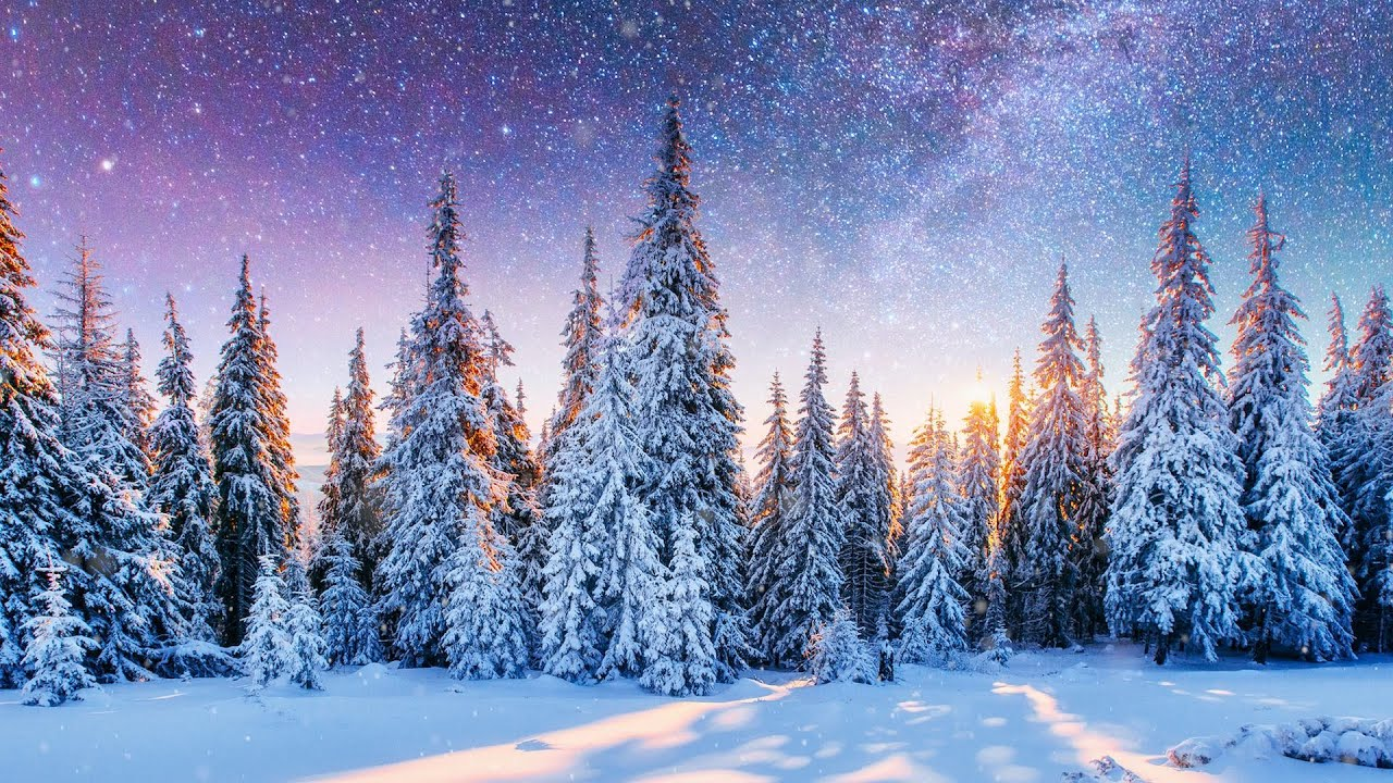 """Peaceful Instrumental Christmas Music: Relaxing Christmas music """"The Christmas Pines"""" Tim Janis"""
