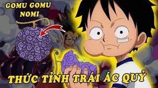 Top 5 năng lực Luffy có thể sẽ có khi thức tỉnh trái ác quỷ Gomu Gomu