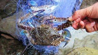 Phu Quoc Island Fishing - Part 2