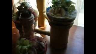 Florarium Флорариум сад в бутылке.(Изготовление и продажа настольных флорариумов любой сложности. Группа в Контакте: http://vk.com/flora24., 2012-09-05T16:33:42.000Z)