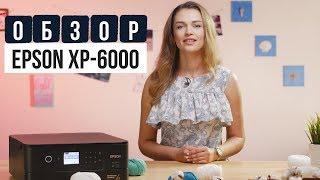 Обзор нового МФУ для дома Epson XP-6000 с Дариной