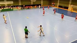 第41回全国高校ハンドボール選抜大会 1回戦 市川vs学法石川⑧