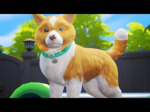 TRAINING SPRINKLES! | THE SIMS 4 // CATS AND DOGS — PART 5