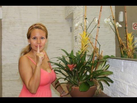 №23 АМЕРИКА Аренда квартиры в Майами