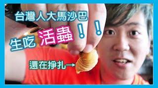 台灣人生吃活蟲Butod!沒吃過等於沒來過馬來西亞沙巴!ft.FULOVE、LindaTeaTv|跟著華少吃吃吃EP.03