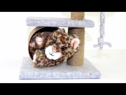 DIY   Pet Toys