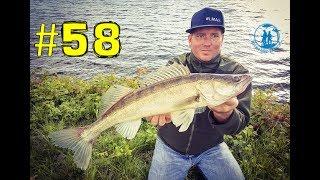 Wie fängt Micha ständig solche Fische? | hechtundbarsch.de