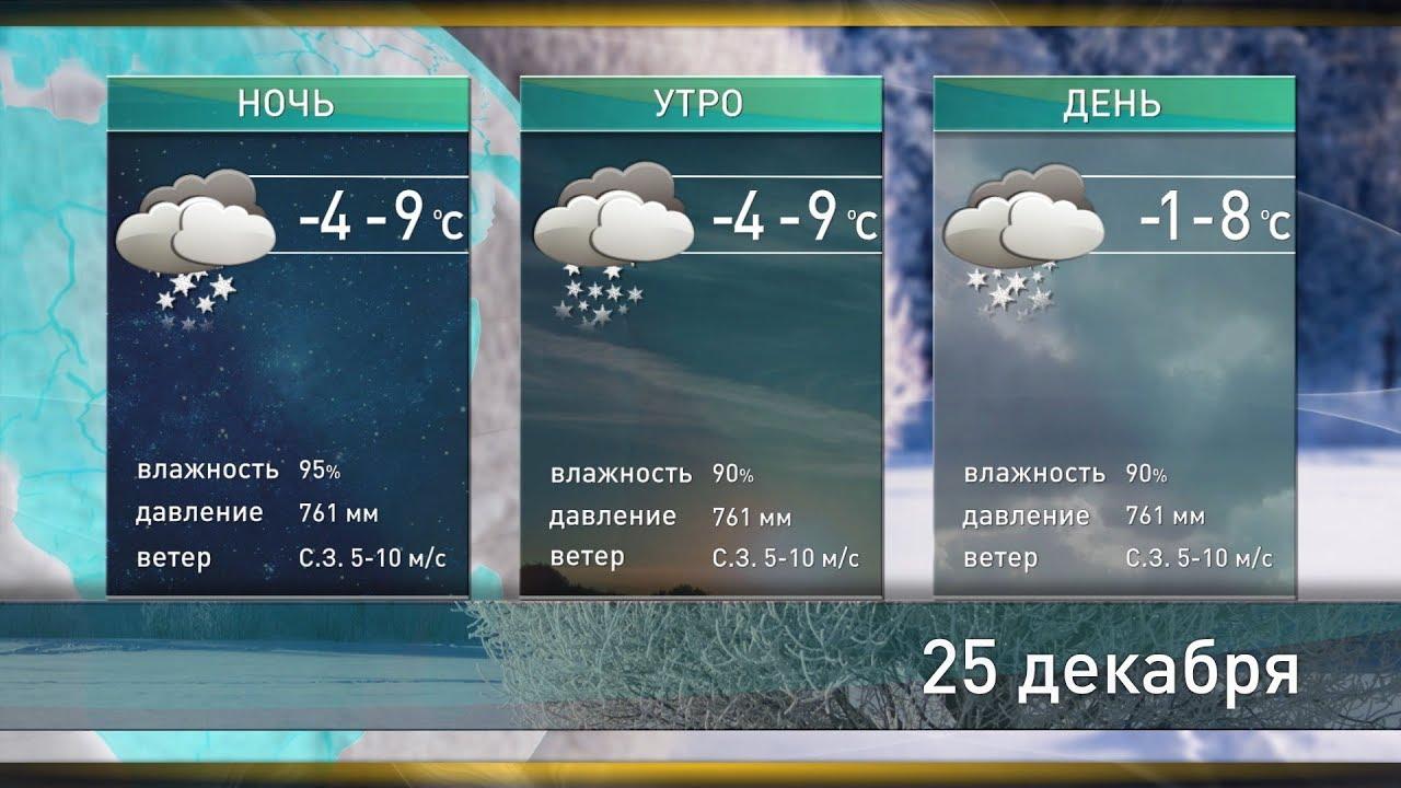Прогноз погоды в зимней ставке кто много заработал на ставках