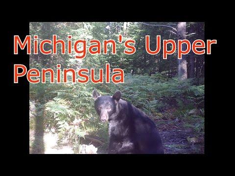 Michigan's Unique Upper Peninsula