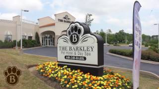 Assisted Living for Pets? The Barkley Pet Hotel & Day Spa - Cleveland, Ohio