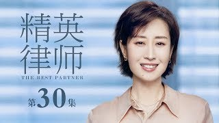 精英律師-30-the-best-partner-30-靳東-藍盈瑩-孫淳等主演