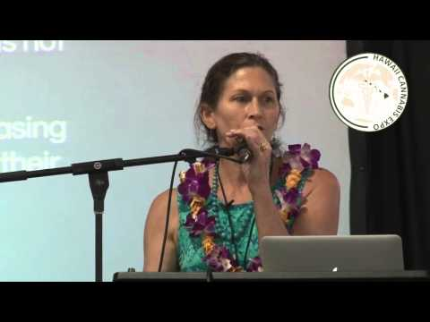 Wendy Gibson  The Medical Use of Marijuana Program in Hawaii