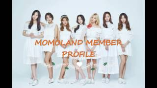[MOMOLAND] MEMBER PROFILES YOU NEED TO KNOW
