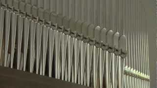 Die neue Rieger-Orgel der Pfarrkirche Lingenau