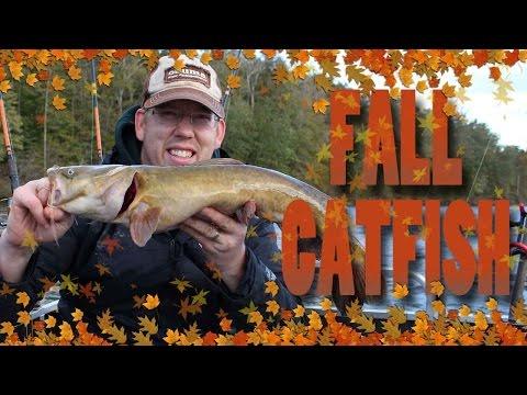 Fall Catfishing - Catching Catfishing In High Wind - Fishing For Catfish In The Fall