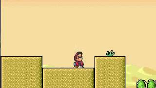 Super Mario Advance 4 - Super Mario Bros. 3 - E-Reader Level Vegetable Valley - User video