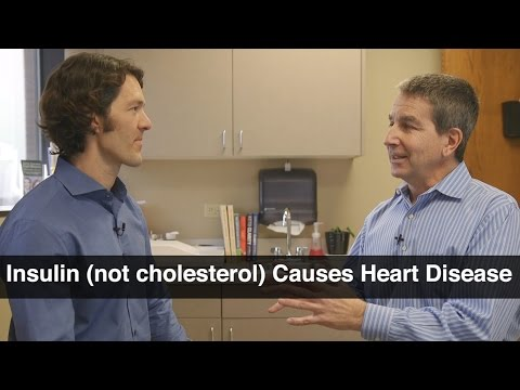 Insulin Resistance Not Cholesterol Causes Heart Disease - Jeffry Gerber, MD
