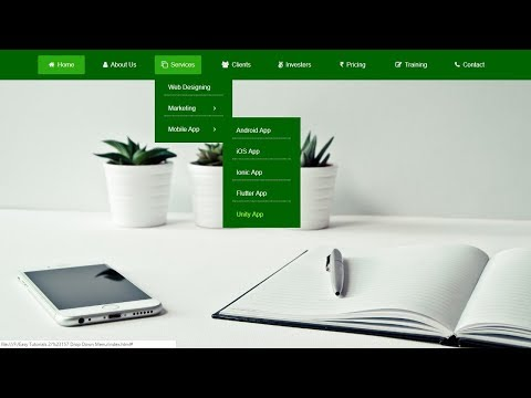 How To Make Drop Down Menu Using HTML And CSS | HTML Website Tutorials