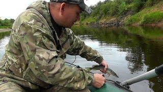 За ЩУКОЙ в августе! Сплав по ЛЕСНОЙ, красивой реке! Рыбалка на СПИННИНГ!