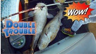 Double on GIANT Flathead Catfish! (Feat Chatt Cats Fishing)