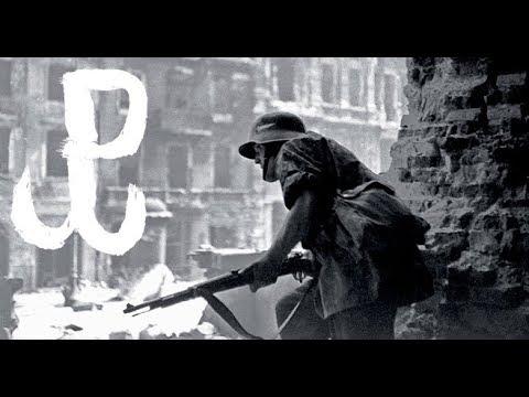 Kto wepchnął Polaków z powstaniem warszawskim pod kosiarkę ?
