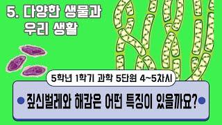[용툰과 교육영상] 5학년 과학  5단원 : 4~5차시…