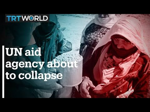 UN aid agency for Palestine on the verge of collapse