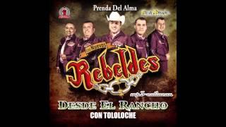 Gambar cover Los Nuevos Rebeldes - Prenda Del Alma (Desde El Rancho Con Tololoche 2013)