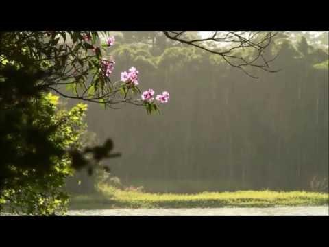 Auld Lang Syne (Instrumental)