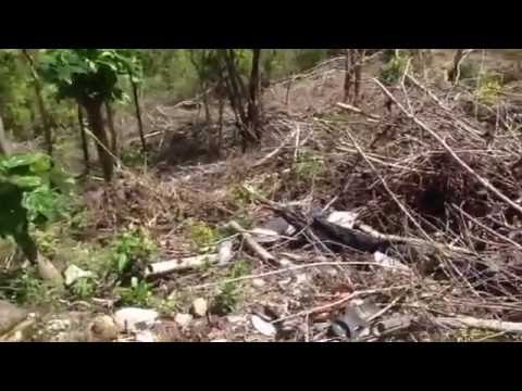 Land for sale in Au Tabor Anse La Raye St Lucia