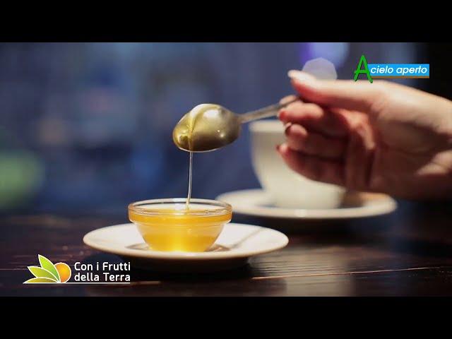 Puntata del 9/8/20 – 2° parte – Il miele minacciato dall'estero