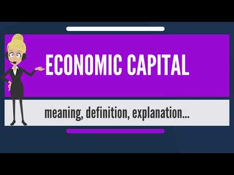 What is ECONOMIC CAPITAL? What does ECONOMIC CAPITAL mean? ECONOMIC CAPITAL meaning & explanation