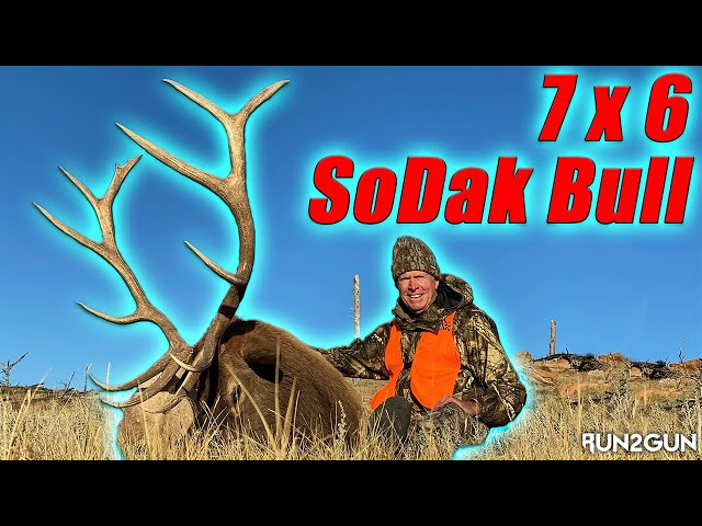 Black Hills Elk-16 Year Wait
