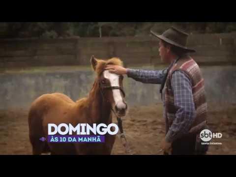 Passion | Cavalo Crioulo EP 02 Cabanheiro (chamada)