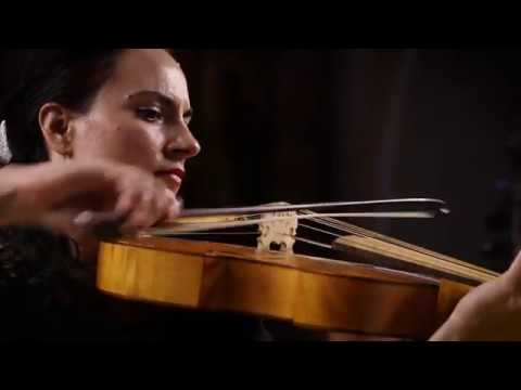 Antonio Vivaldi   Viola d'amore Concerto in D Minor RV 393   Allegro   Jesenka Balic Zunic Kore