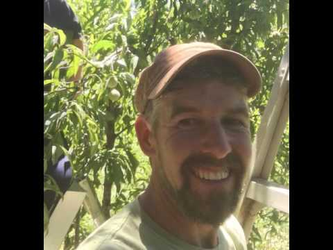 Don Tipping on Seeds and Plant Breeding