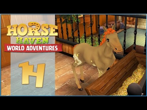 Horse Haven || A StarStudded Foal Is Born!!  Episode #14