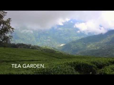 Sikkim travel Documentary.