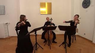 Divertimento in G Major Hb.IV:7 (1784) by Joseph Haydn