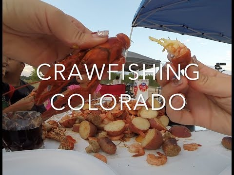 Crawfishing Colorado, Food, Family, And Fun.  Crayster Field Research Video
