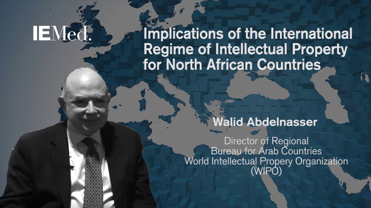 Implications of the International Regime of Intellectual Property for North African Countries