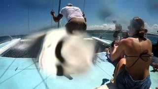 Margaritaville Catamaran 031716
